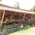 Bambooซิ๊ด
